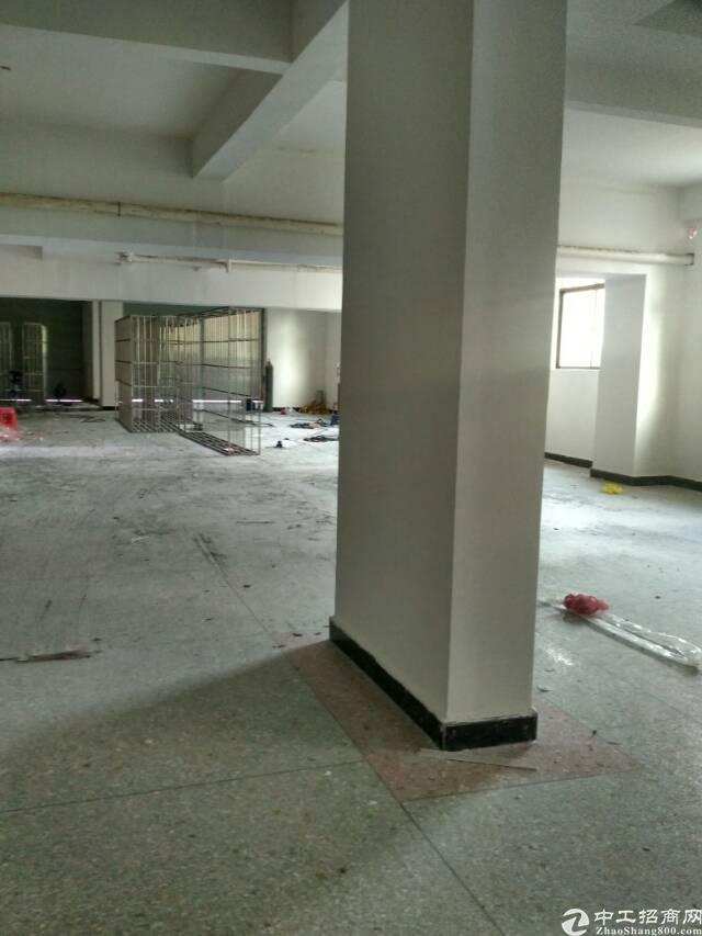 全新原房东标准厂房