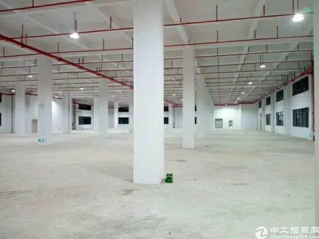 惠州新圩全新厂房招租