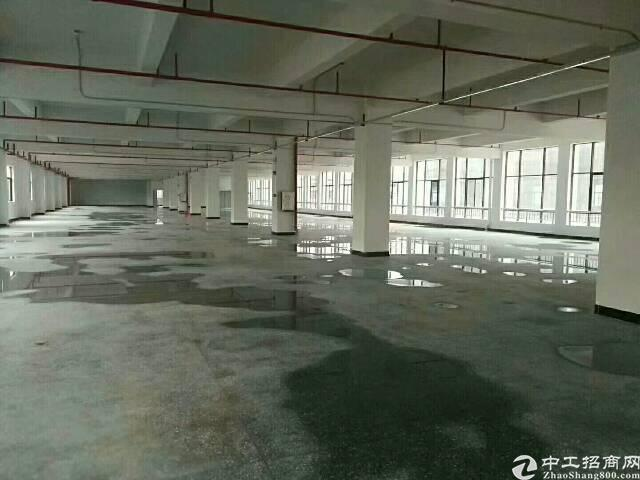 龙华大浪新出独院厂房,厂房1-4层共7800平方米单层面积