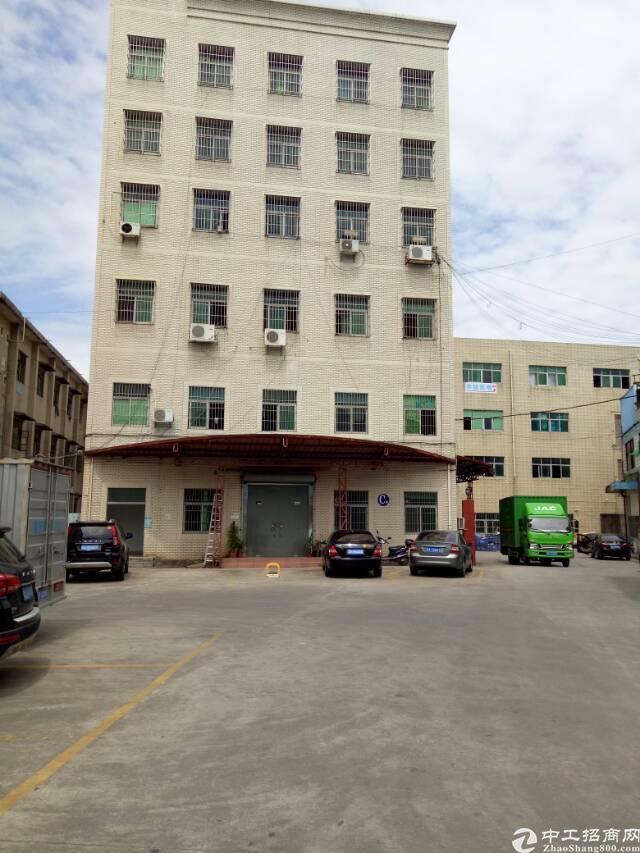 坑梓金沙市场附近办公室一楼350平招租