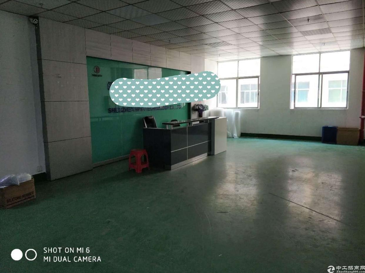 福永107国道旁新出750平红本精装修无转让费原房东厂房招租