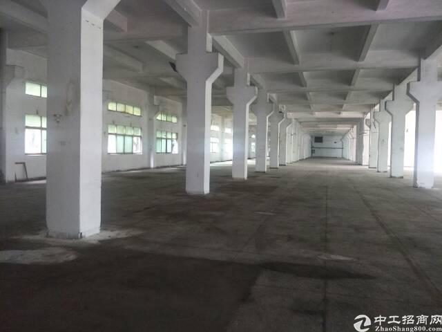 公明镇南光高速出口一楼2000平米带牛角红本厂房出租