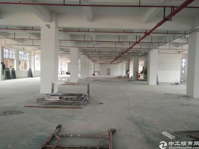 虎门广深高速附近全新厂房出租4000平方,一楼6米高-图2