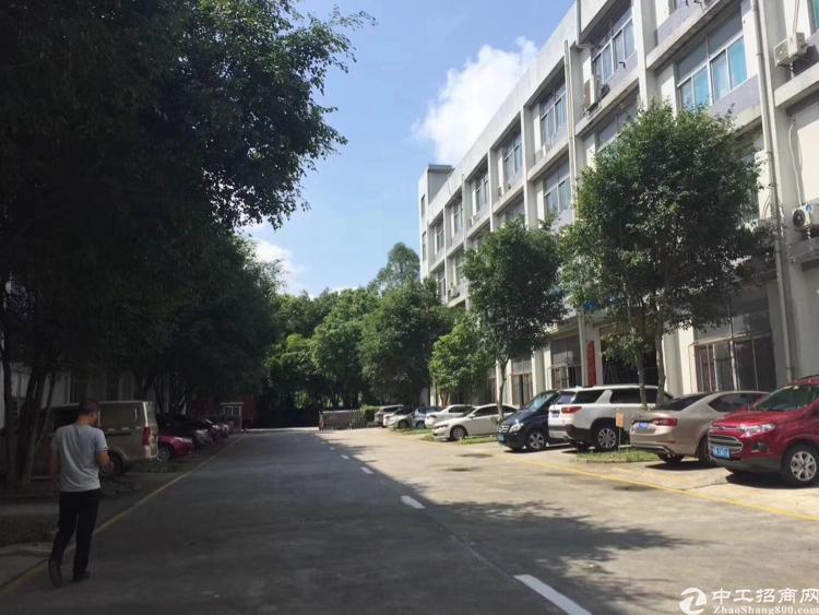 观澜原房东楼上2000平带豪华装修
