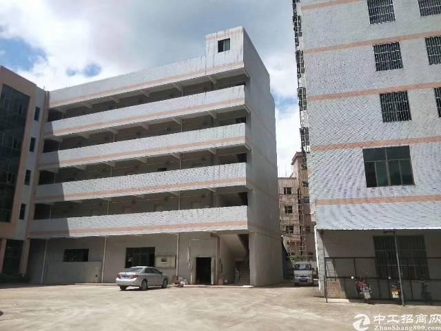 龙岗龙东新空出厂房一楼1350平,带消防喷淋