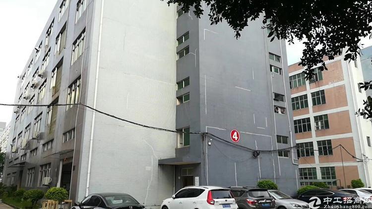 原房东带装修,1600平楼上,价格超低