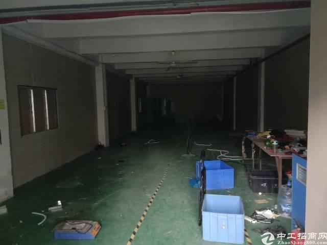 万丰大钟山附近新出厂房,水电到位,有简易装修