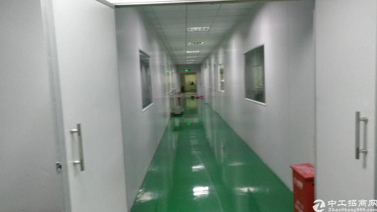 龙岗爱联嶂背原房东1200平米厂房出租