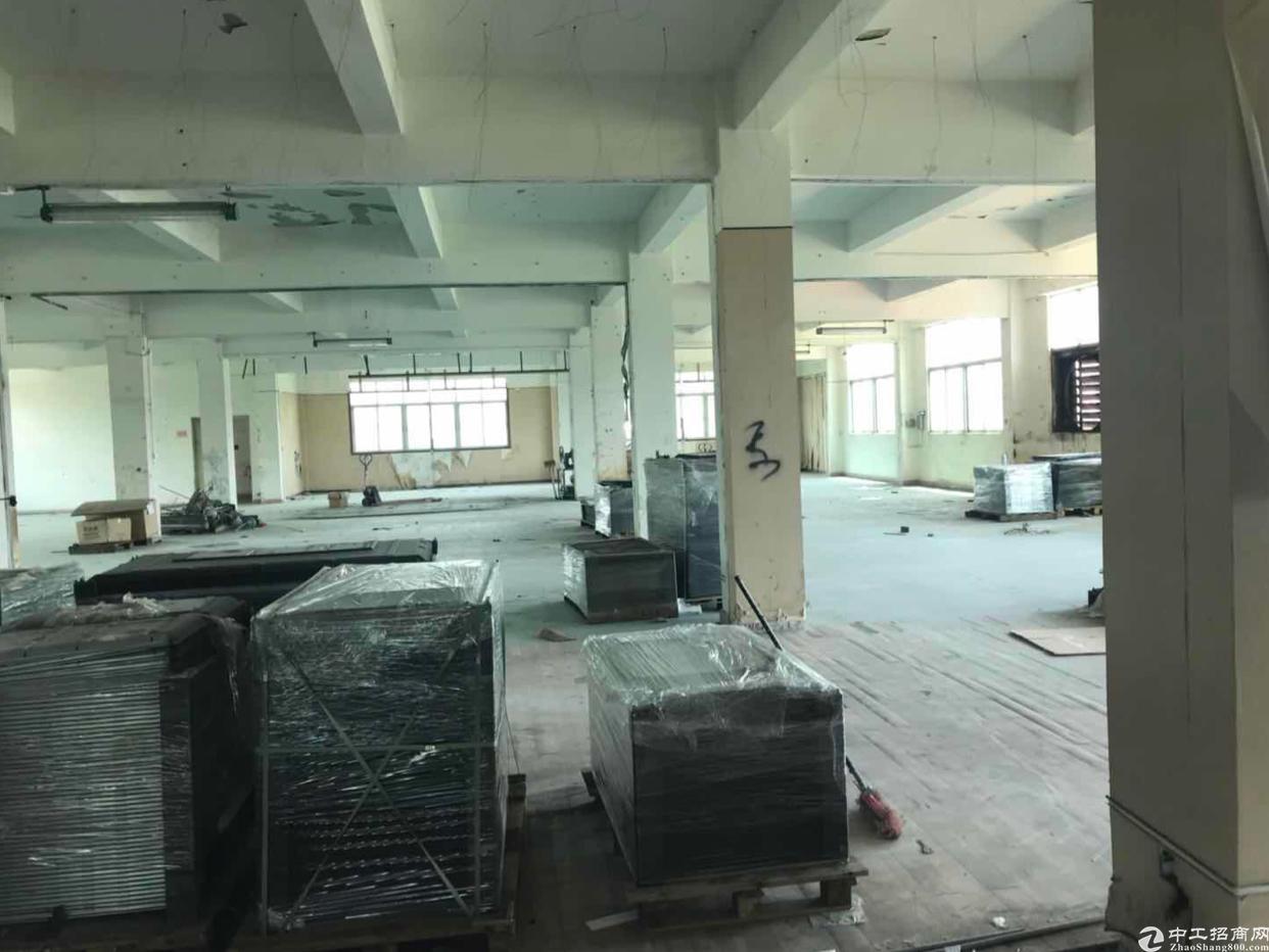 观澜清平高速旁原房东厂房出租