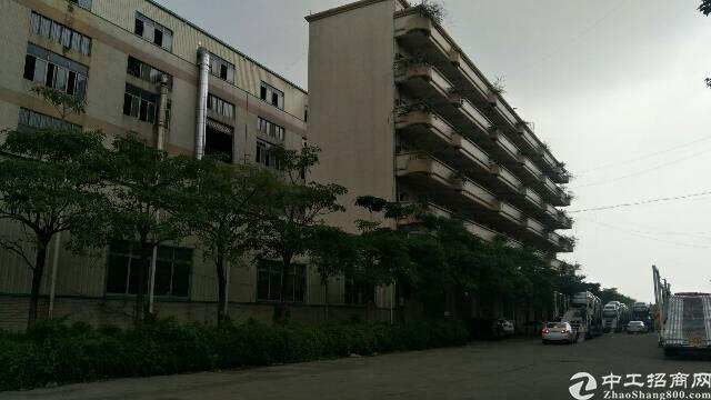 新塘镇标准厂房