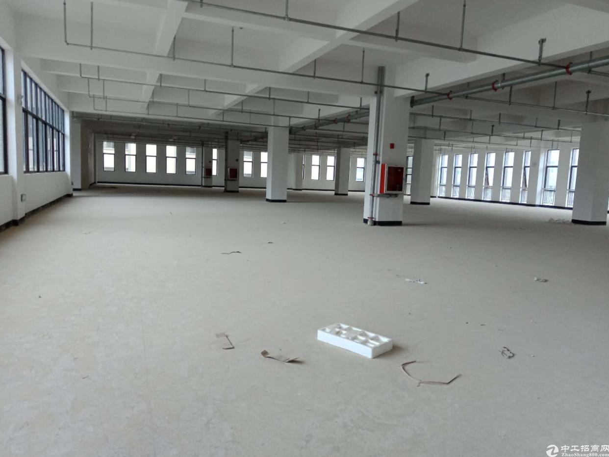 惠州独门独院厂房18000平,独立变压器400千瓦-图2