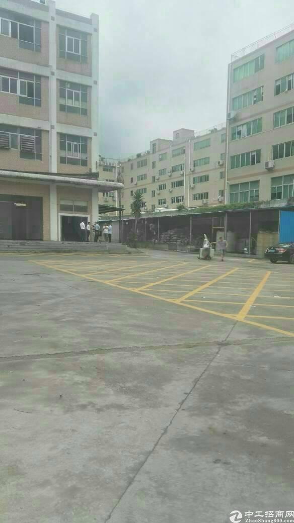 广州新塘明包厂房60000平出租
