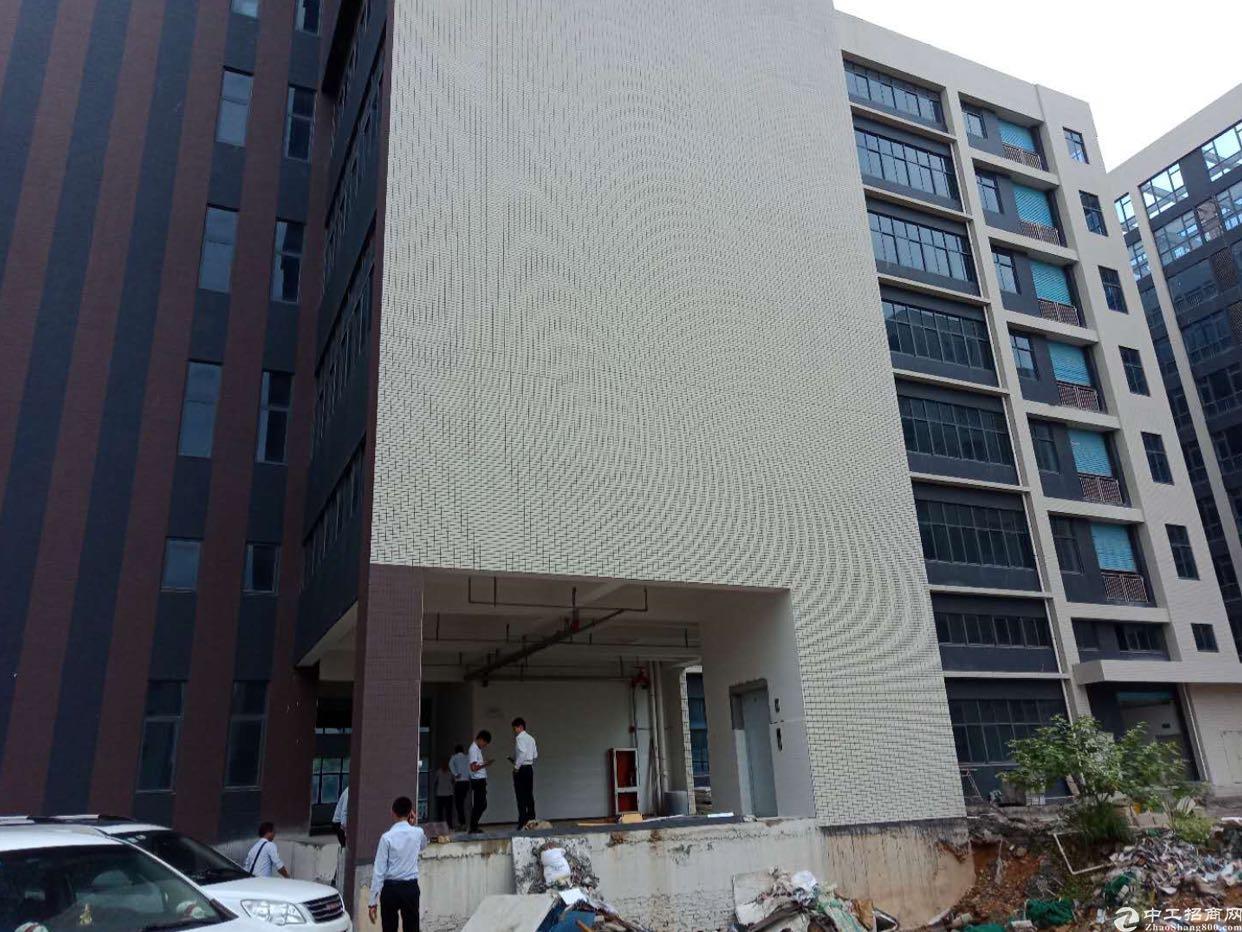 惠州标准厂房10000平出售