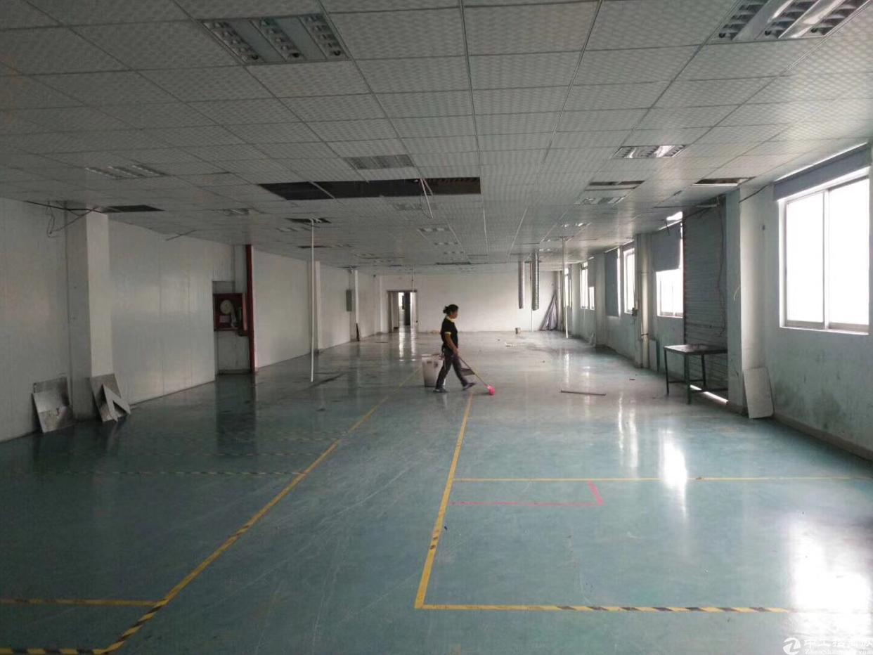 福永107国道旁原房东厂房带装修出租