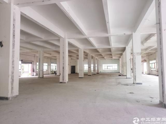 原房东红本8000—10000平方米厂房-图8