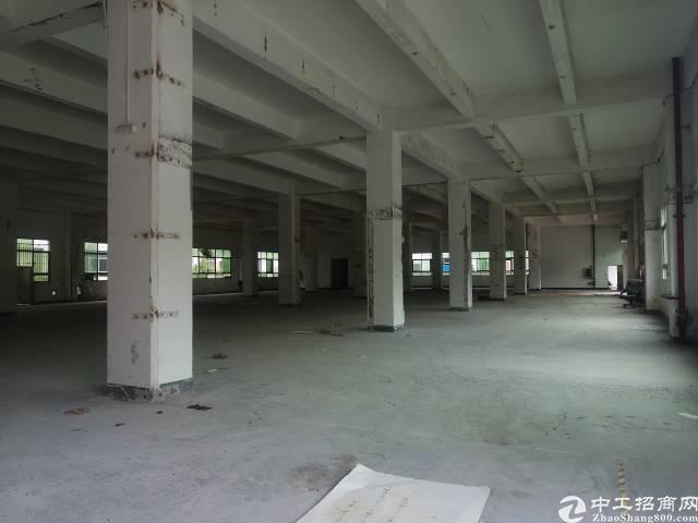 原房东红本8000—10000平方米厂房-图3