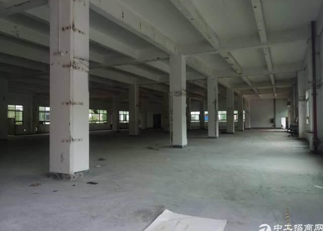 原房东红本8000—10000平方米厂房