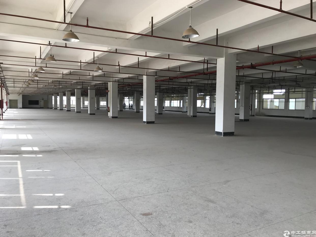 桔洲独门独院厂房分租二楼2600平方