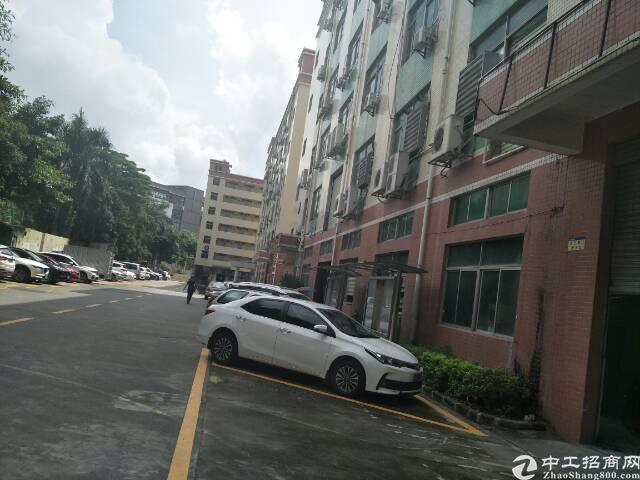 西乡九围和胜工业区附近一楼900平方租金35元