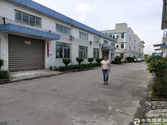 工业园区独栋钢构1600平米出租,滴水6.5米