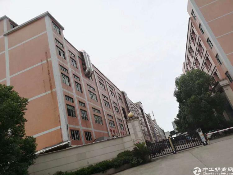 新塘镇高大上独院标准厂房