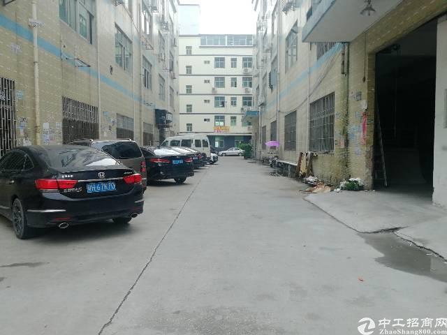 龙华汽车站一楼厂房出租,层高6米,好进车