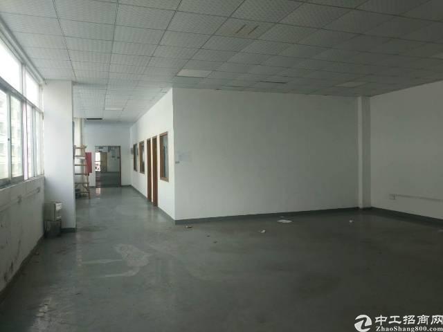 新和急租厂房500平出租(原房东)