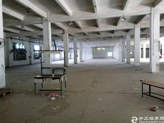 万江大汾标准厂房分租一楼1700平方出租