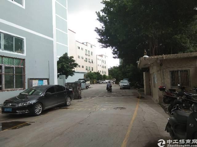 沙井庄村靠107国道新出楼上800平全吊顶