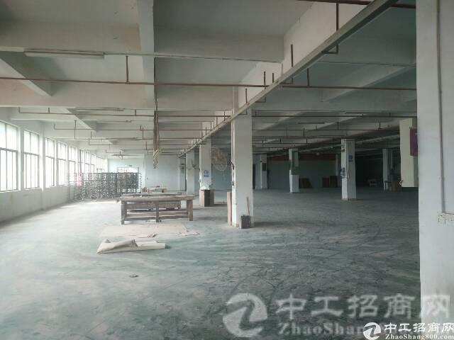 [潼侨镇厂房]潼侨镇独院一楼标准厂房3000平米