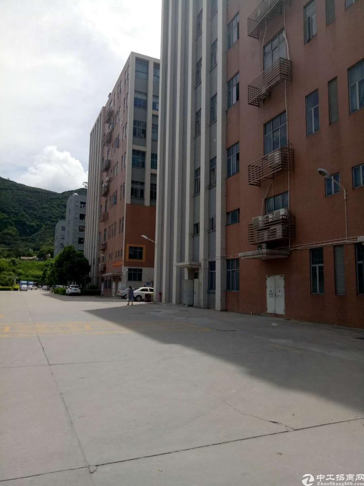 西乡固戍海滨公园旁全新厂房1300平火热出租