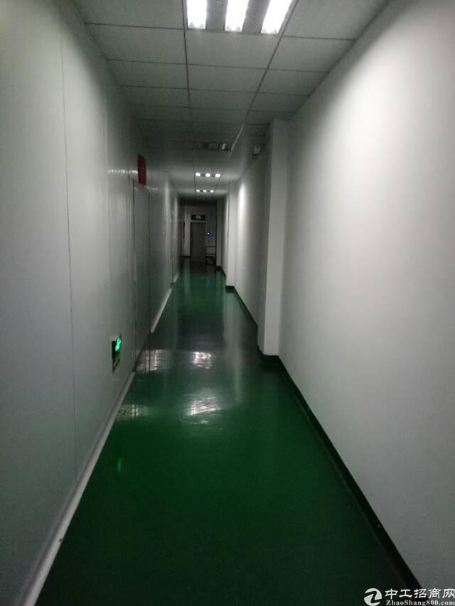 坑梓秀新社区三楼带现成无尘车间厂房1100平米