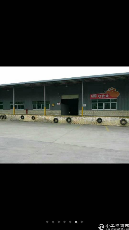 公明塘尾村10米钢构出租6000平卸货平台20米拖车可以掉头