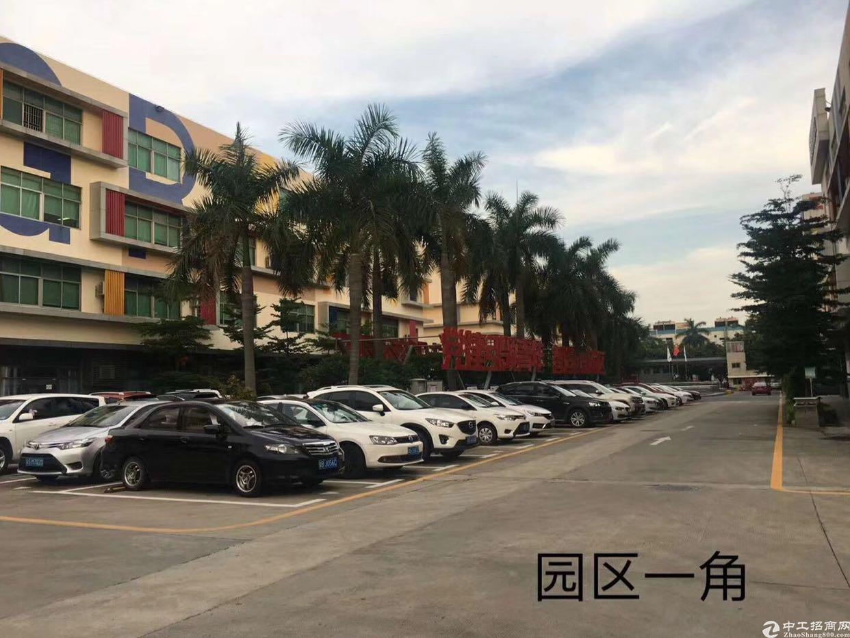福永宝安大道桥头地铁口旁新出500平带装修无转让费厂房出租