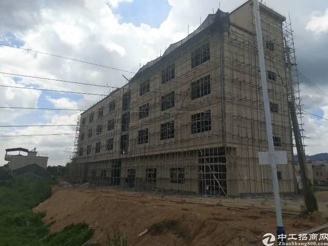 出售东莞塘厦村委厂房占地50000平米