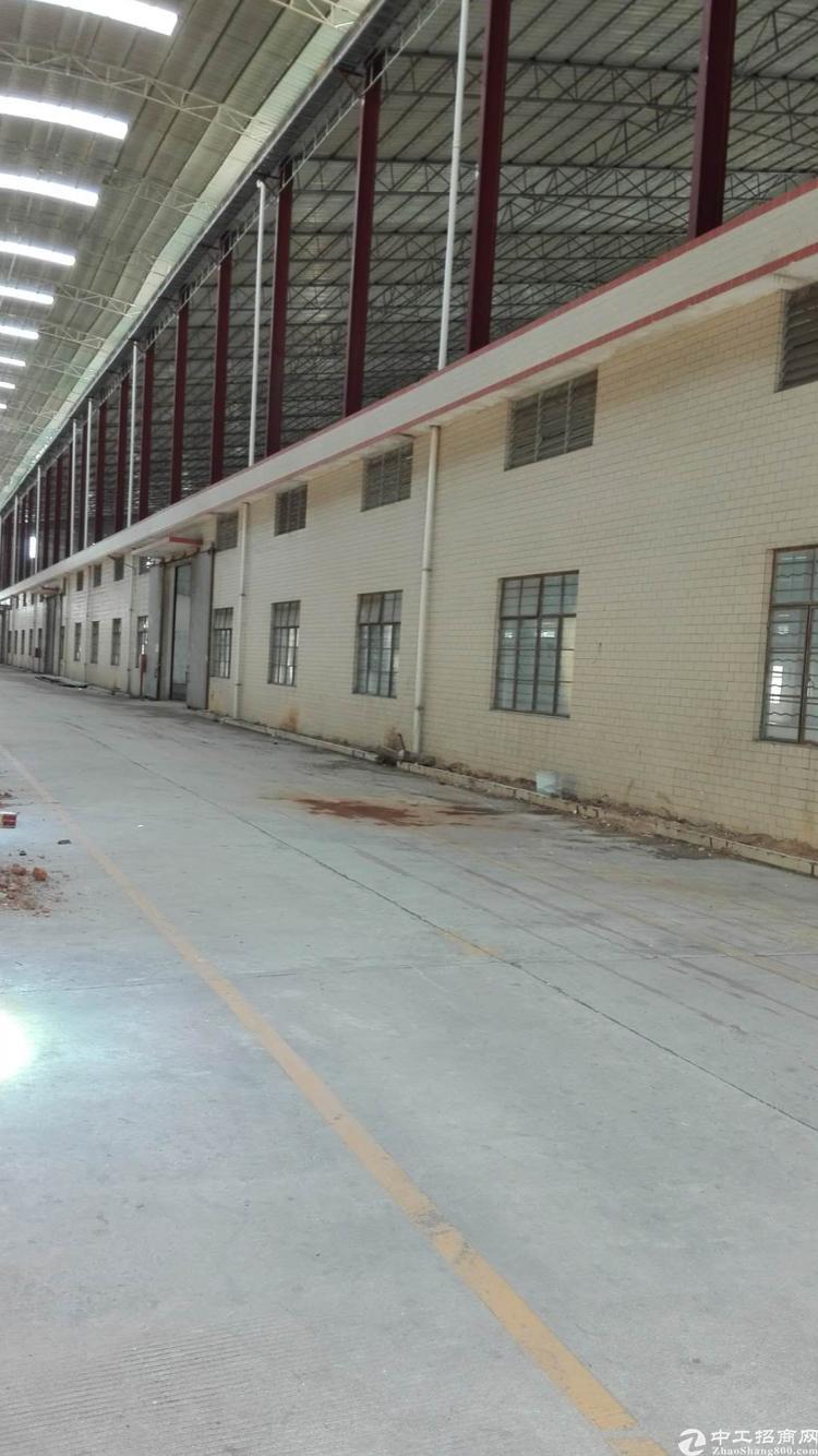 广州市白云区独门独院滴水14米钢构10000平方米