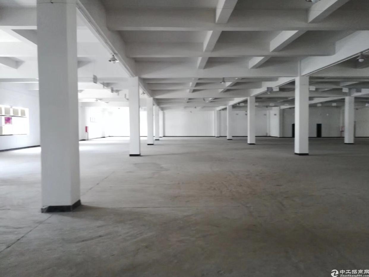 坑梓 龙田大型工业区一楼整层3600平工业用地有红本