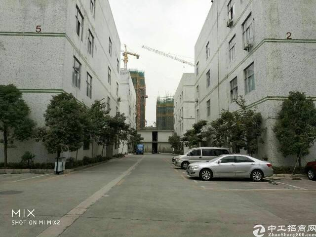 石岩水田新出楼上740平带简单装修厂房出租