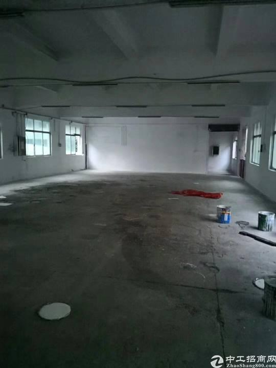 公明将石独门独院厂房2900平米招租-图5