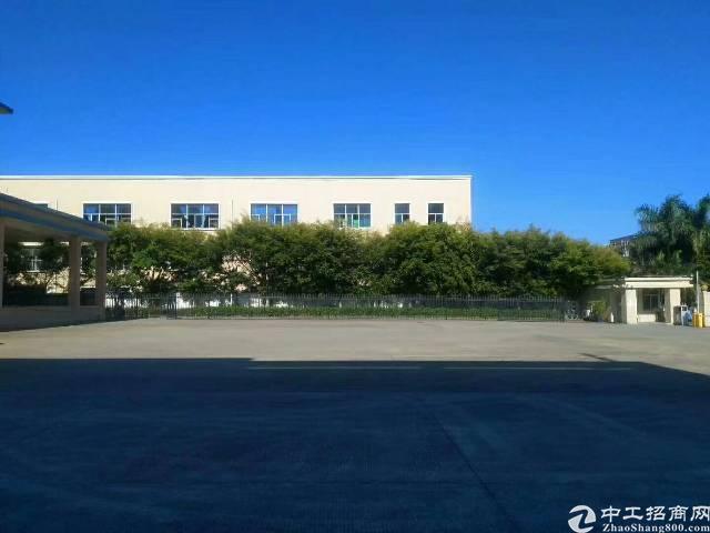惠州新出独门独院标准钢构厂房招租