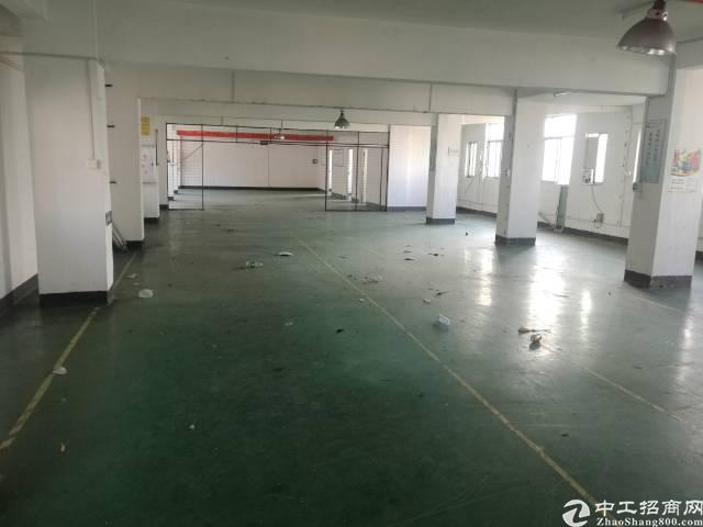 福永 和平原房东厂房出租11000平方使用面积