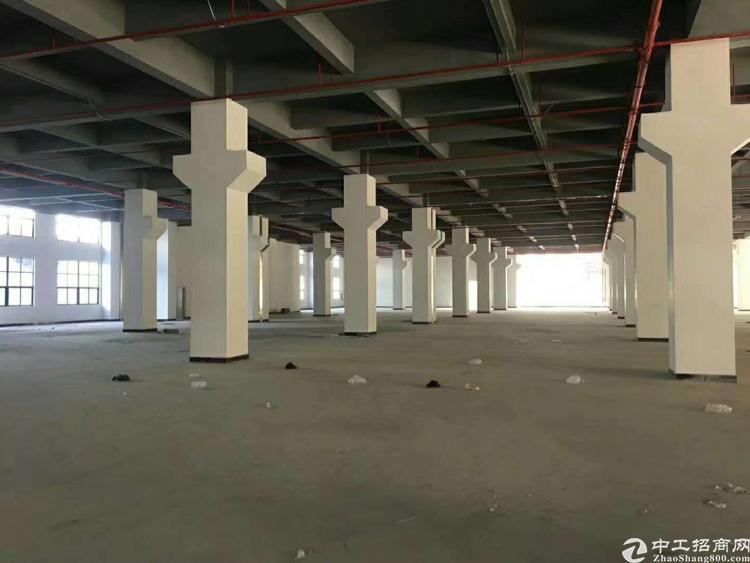 福永地铁口带红本独院46500平方大小分租-图3