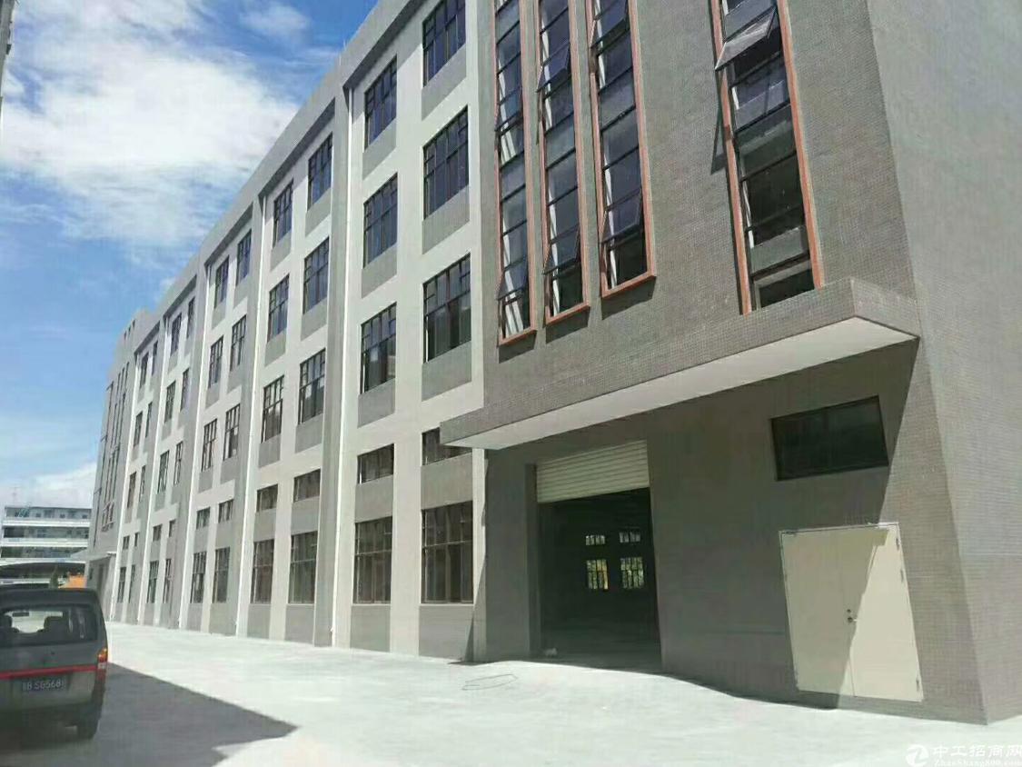 新出标准厂房13800平方米