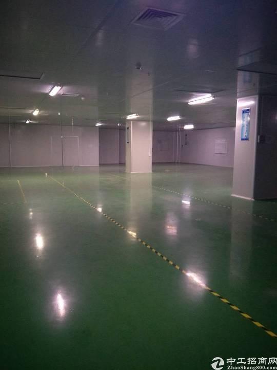 福永大型工业园新出楼上2800无尘车间厂房招租