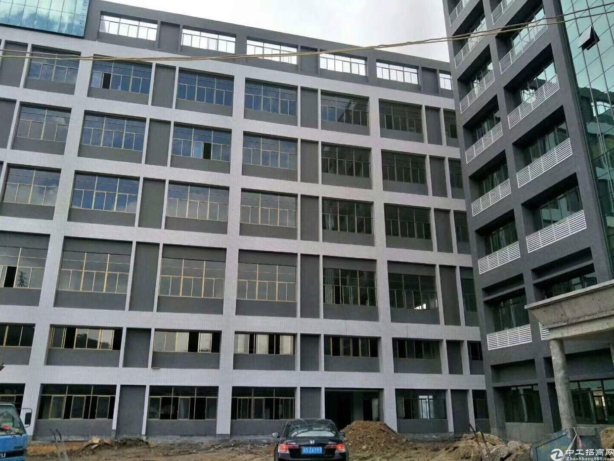 平湖新建厂房5万平出租