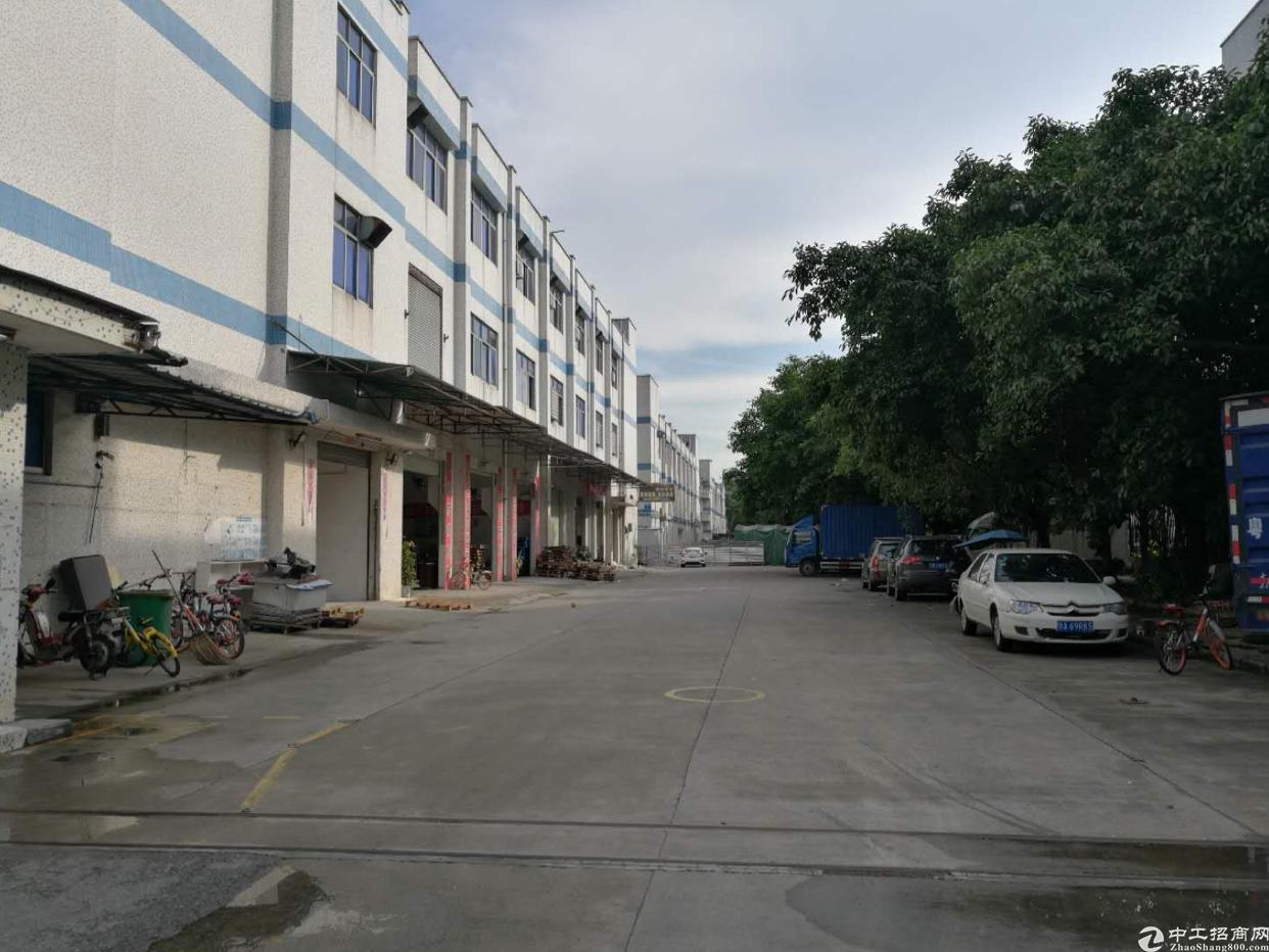 西乡九围工业区1380平方,租金28元月。