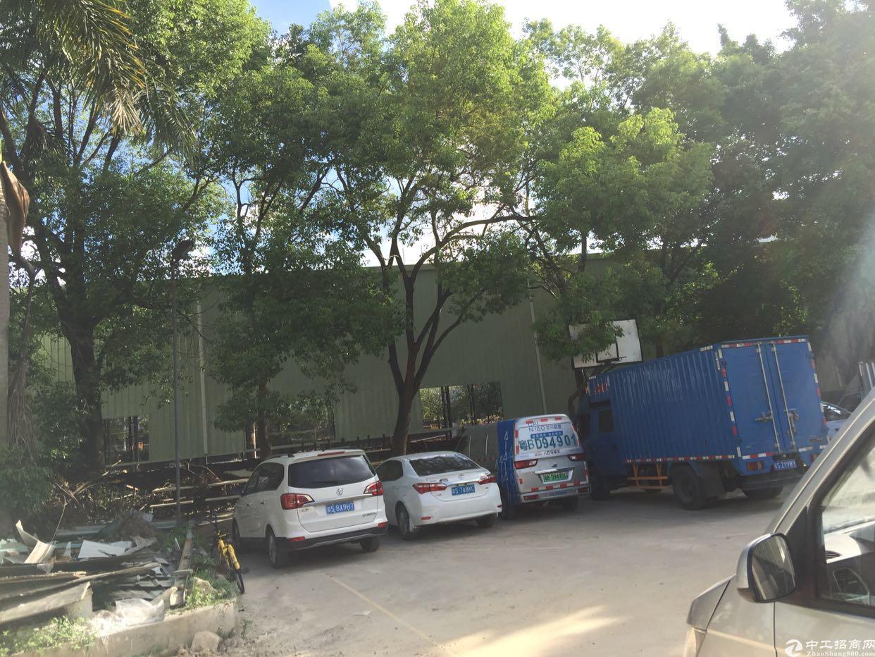 凤岗镇独栋钢构8000平方米出租。滴水7米-图6