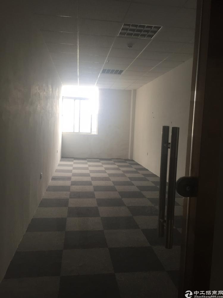 沙井创盈大厦60平出租,带背景墙