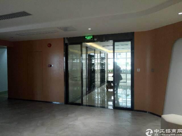 (出租) 深圳新会展门户企业总部办公 写字楼直租图片9