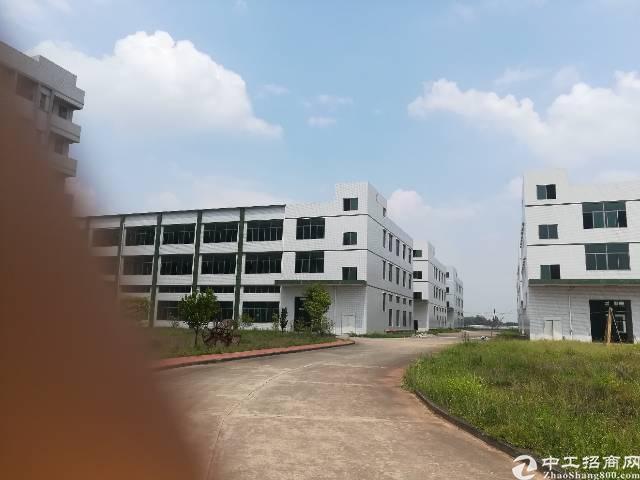 惠州博罗大型工业园自带工艺品环评标准厂房出租